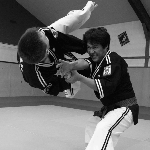 World Hapkimudo Federation - Techniques
